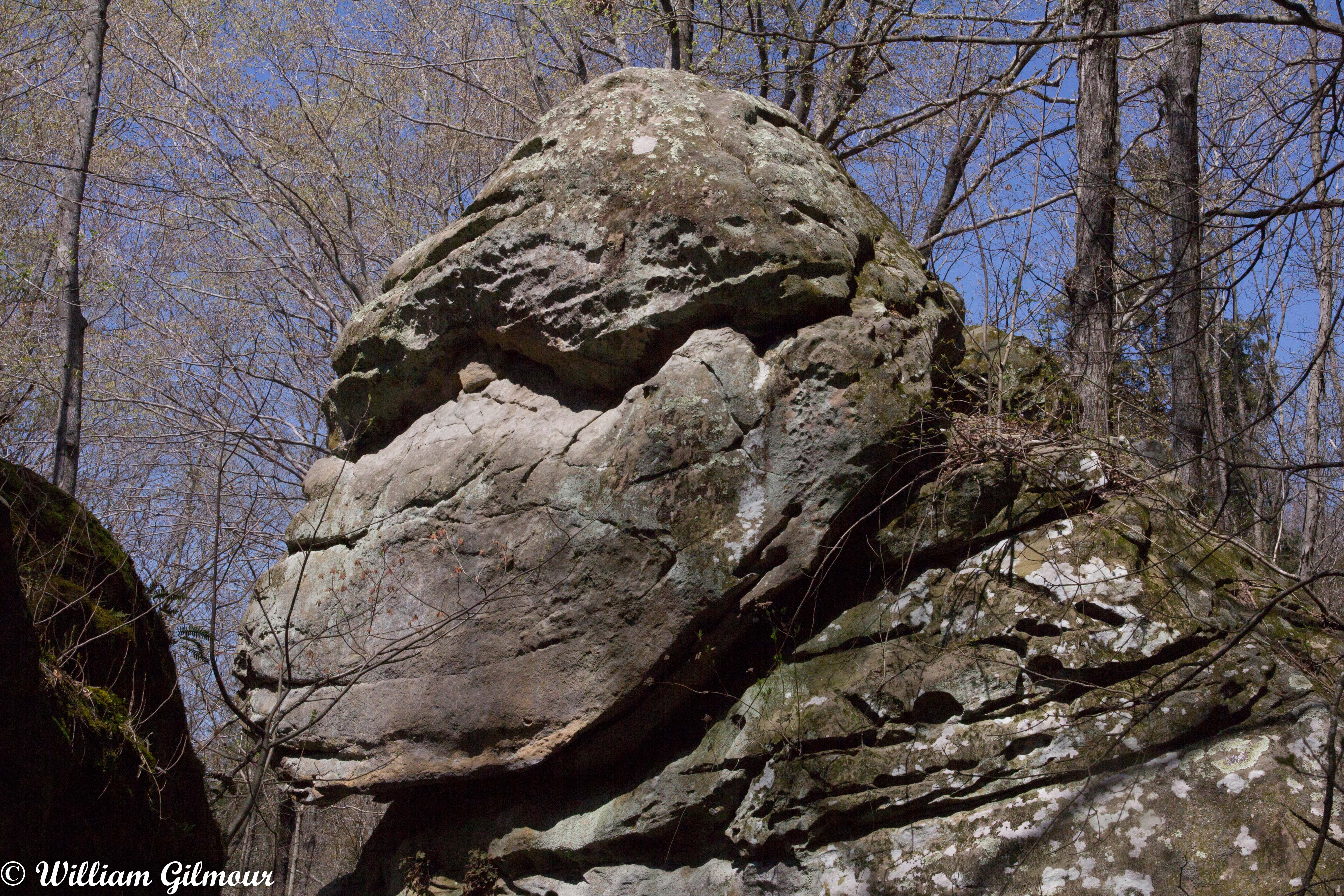 Shawnee National Forest Other Information - The River to